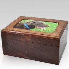 Reflection Photo Pet Cremation Urn
