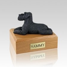 Schnauzer Black Ears Down Laying Medium Dog Urn