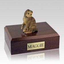 Scottish Fold Brown Tabby Large Cat Cremation Urn