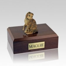 Scottish Fold Brown Tabby Medium Cat Cremation Urn