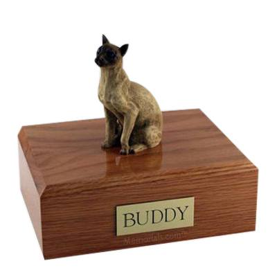 Siamese Tan X Large Cat Cremation Urn
