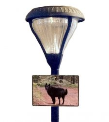 Solace Pet Photo Grave Lamp