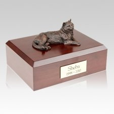 Tabby Bronze Cat Cremation Urns