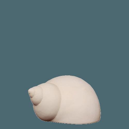 Turban Shell Keepsake Urn