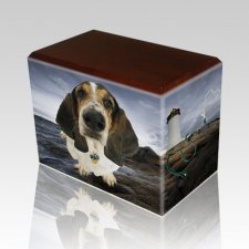 Lighthouse Walnut Pet Picture Urn