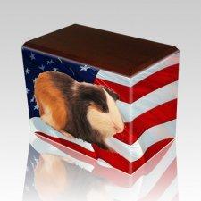 US Flag Walnut Pet Picture Urn