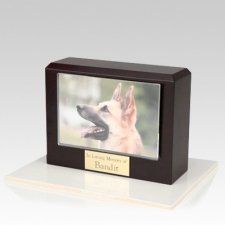 Walnut Picture Small Pet Cremation Urn