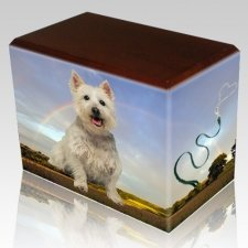 Rainbow Walnut Pet Picture Urn III