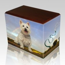 Rainbow Walnut Pet Picture Urn II