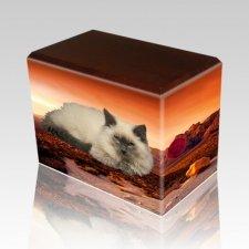 Southwest Walnut Pet Picture Urn