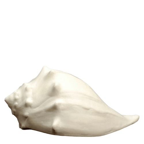 Whelk Shell Cremation Urns