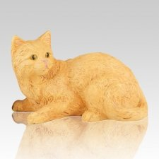Orange Kitty Cremation Urn