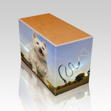 Rainbow Oak Pet Picture Urn