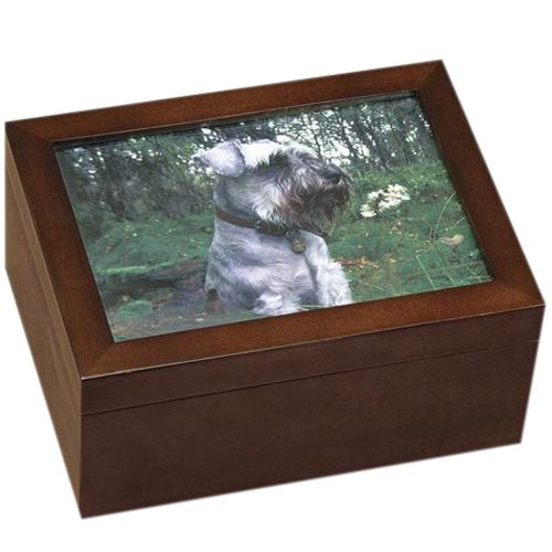 Forever Friends Chest Cremation Urn