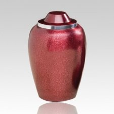 Children Burgundy Cremation Urn