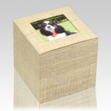 Natural Pet Cremation Urn