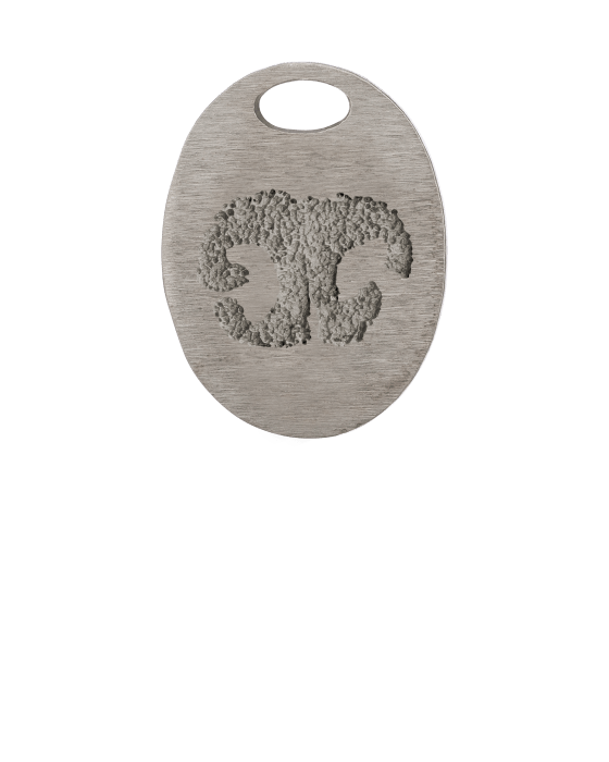 Oval Bronze Nose Print Keepsake Pendant