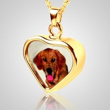 Heart Pet Picture Cremation Pendant II