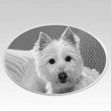 Pet Headstone Pictures Horizontal
