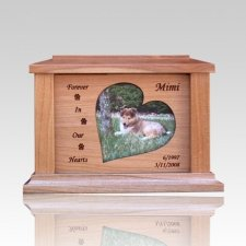 Hearts Forever Picture Cremation Urn - Medium