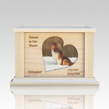 Pet Heart Picture Cremation Urn - Medium