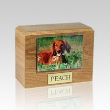 Oak Photo X Large Pet Cremation Urn