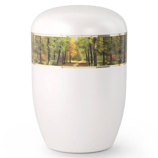 Shining Forest Biodegradable Urn