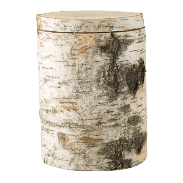 True Birch Cremation Urn