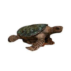 Sea Turtle Bronze Cremation Urn