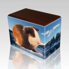 Winter Walnut Pet Picture Urn