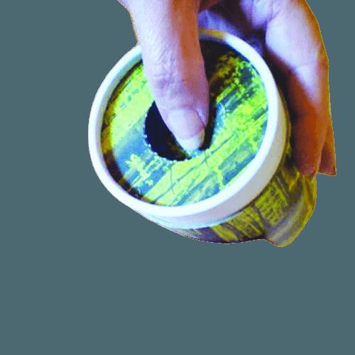 Roses Scattering Biodegradable Urn