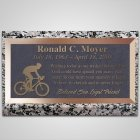 Triathlon Bronze Plaque
