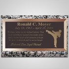 Karate Bronze Plaque