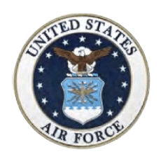 Air Force Insignia Medallion Appliques