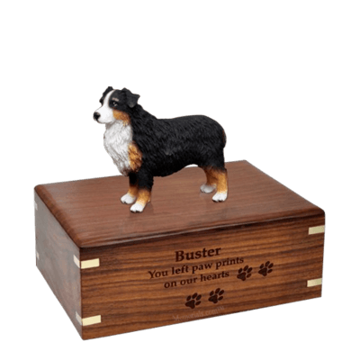 Australian Shepherd Medium Doggy Urn