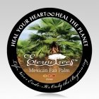 Mexican Fan Palm Cremation Ash Pet Tree