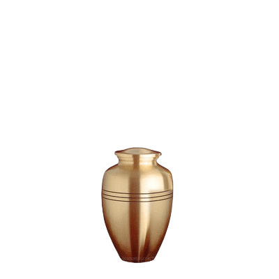 Trenton Bronze Small Cremation Urn