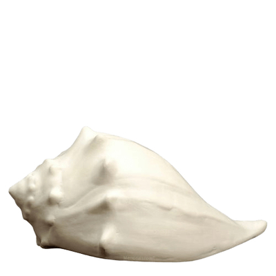 Whelk Shell Cremation Urn