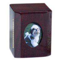 Memento Photo Pet Cremation Urn