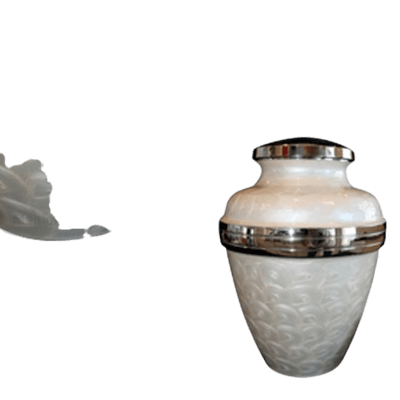 Immaculate Keepsake Cremation Urn